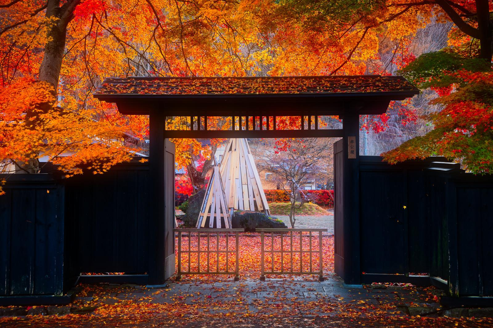 入口(イメージ)