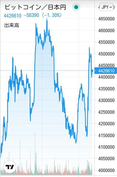 仮想通貨(暗号資産)ビットコインのチャート